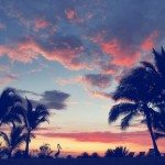 26-Diosa Sunset