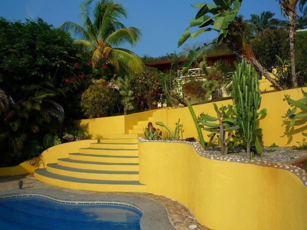 casa papaya 2 012