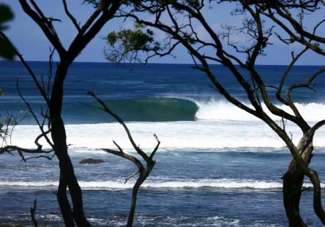 playa negra Costa Rica 2
