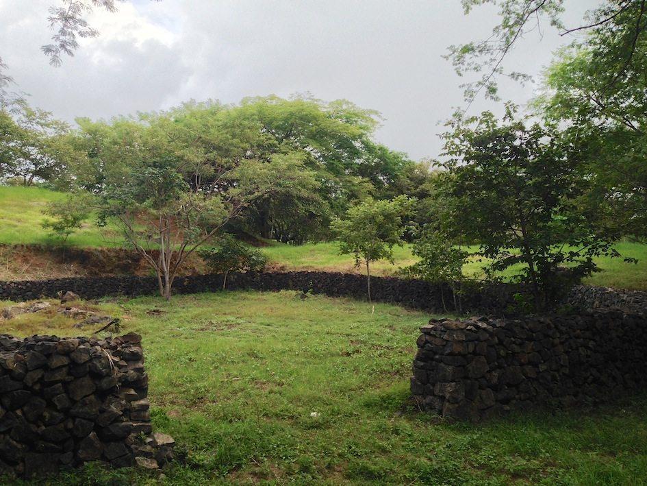 lot1 wall