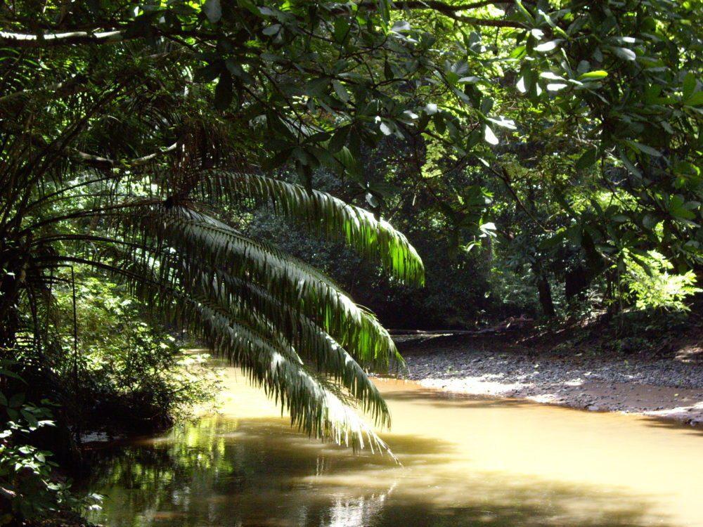 rosario nature reserve 07 (3)