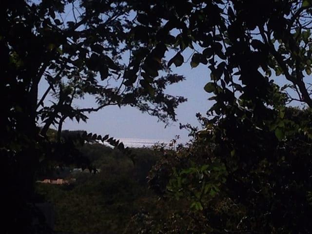 langosta view