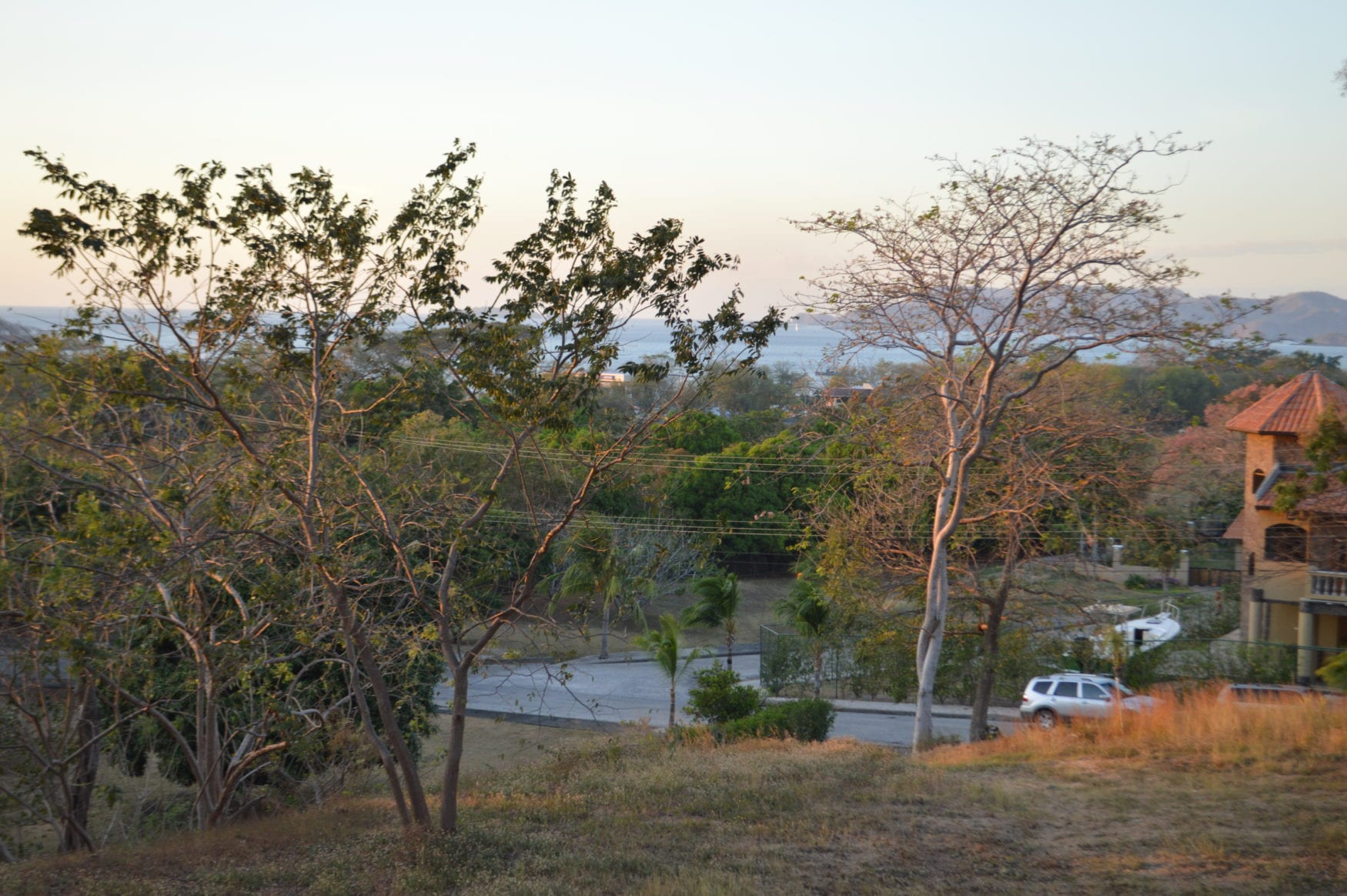 2 – Fruit Trees In Lot – Oceanview Lot in Gated Community Close To Beach