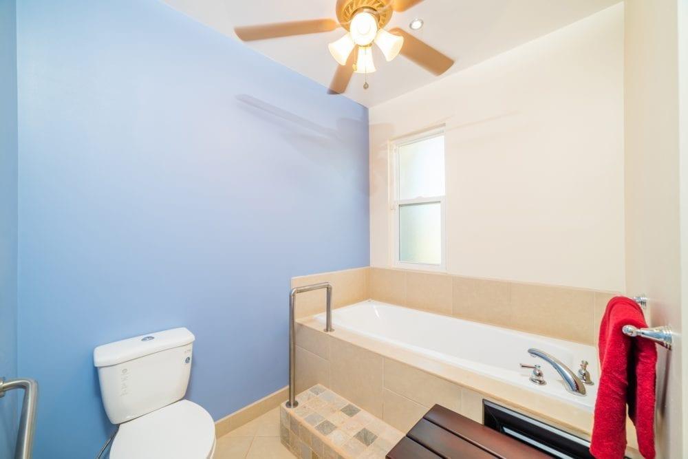 Bath tub in Master bathroom